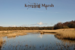 KeepingMarsh2